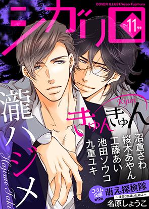 Vol. 11月号(きゅんきゅん)(16/11/04発売)